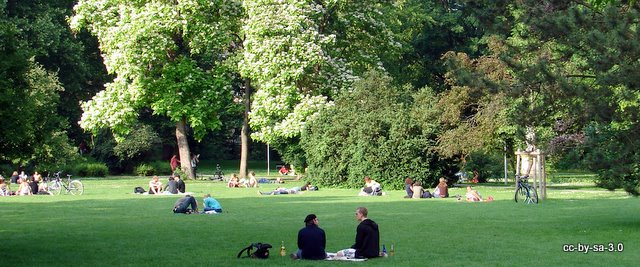 games, beer and sun in the park | studit tübingen english,